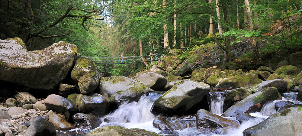 Wildbachklamm Buchberger Leite in Bayern Urlaub im Bayerischen Wald